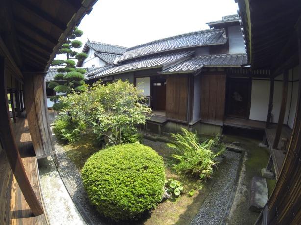 Several interior gardens
