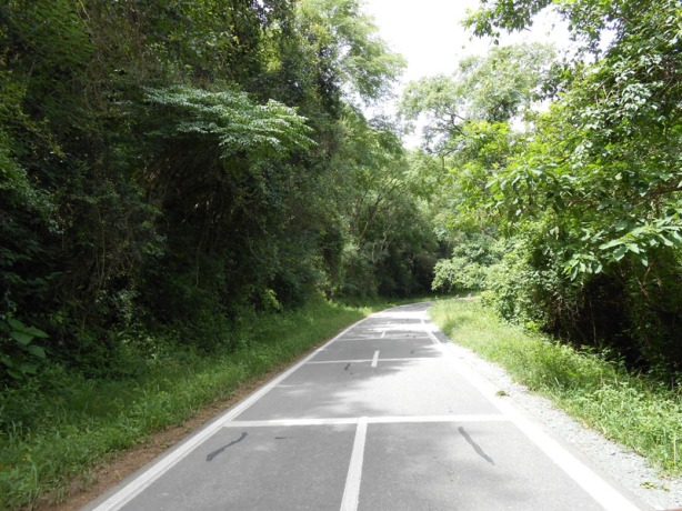 Ruta 9